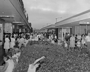 Palms Center 1967