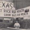 rice slider