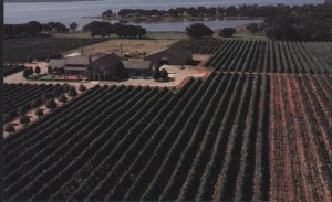 Postcard of Fall Creek Vineyards